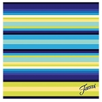 Fiesta® Thirstystone Cool Stripe Coaster